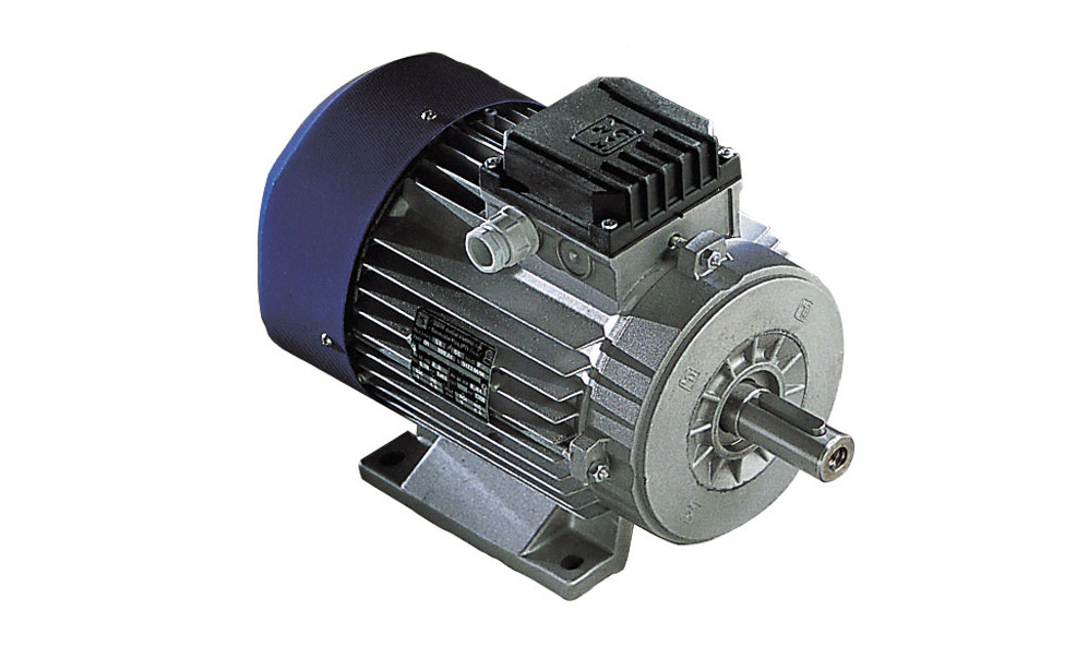 MGM High Efficiency Electric Motors